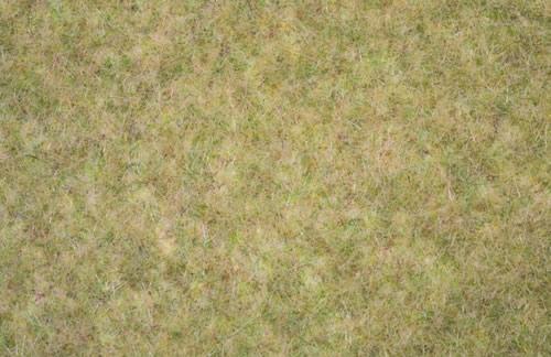 Noch 00406 Tappeto erba autunno