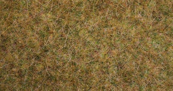Noch 00416 Tappeto erba autunno
