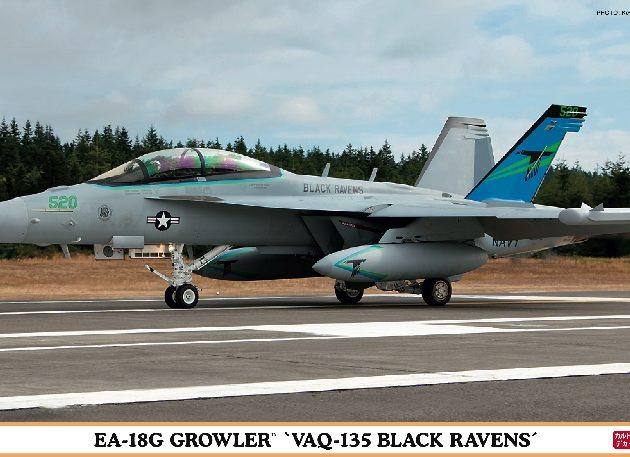 Hasegawa 02000 EA-18G GROWLER VAQ-135 BLACK RAVENS