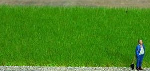 Noch 07073 Erba verde pascolo profi Modellismo