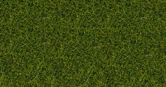 Noch 07092 Barattolo erba verde chiaro 100 gr. Modellismo