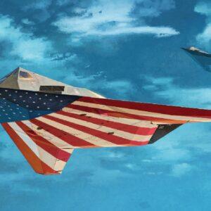 Academy 12219  F-117A NIGHTHAWK:LE