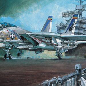 ACADEMY 12253 Grumman F-14a Tomcat