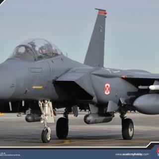 ACADEMY 12295 F-15e Seymour Johnson