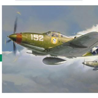 HASEGAWA HASJT93 P-39q/N Airacobra