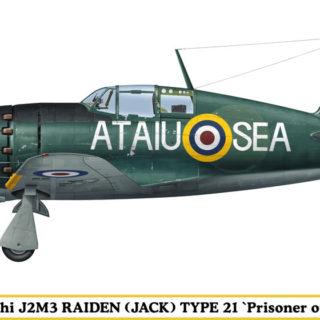"""HASEGAWA HASSP305 Raiden Type 21 """"Prisoner Of War"""""""