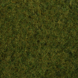 Noch 07282 Fogliame erba selvatica verde oliva