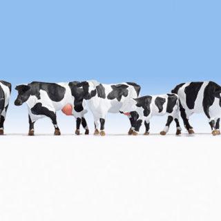 Noch 15725 Mucche pezzate