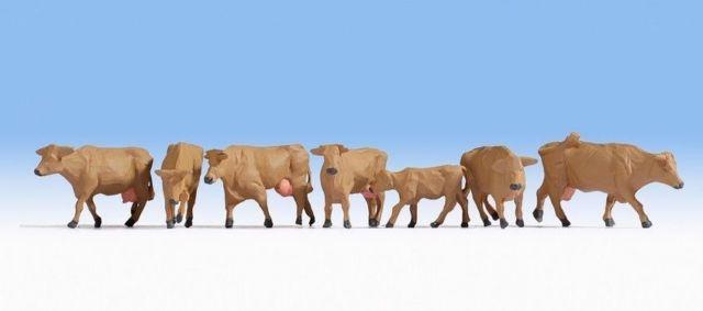 Noch 15727 Mucche marroni