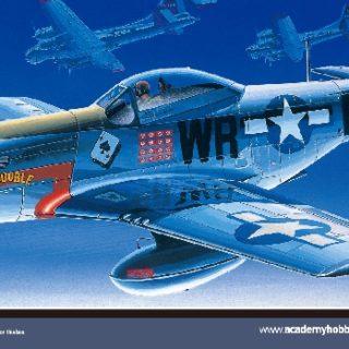 Academy 12485 P-51D MUSTANG